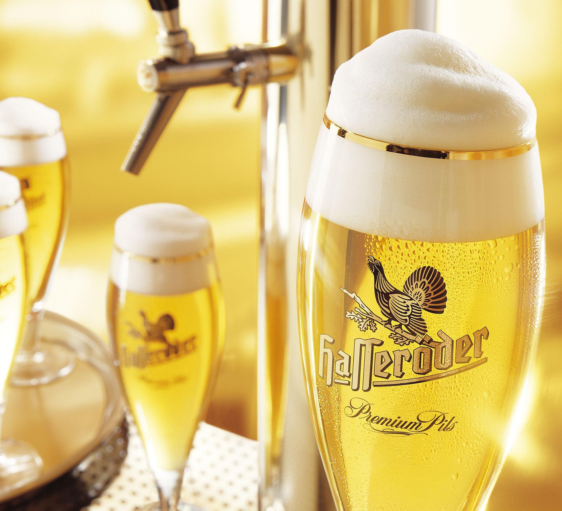 Hasseröder Biergläser auf einem Kneipentresen mit Zapfhahn